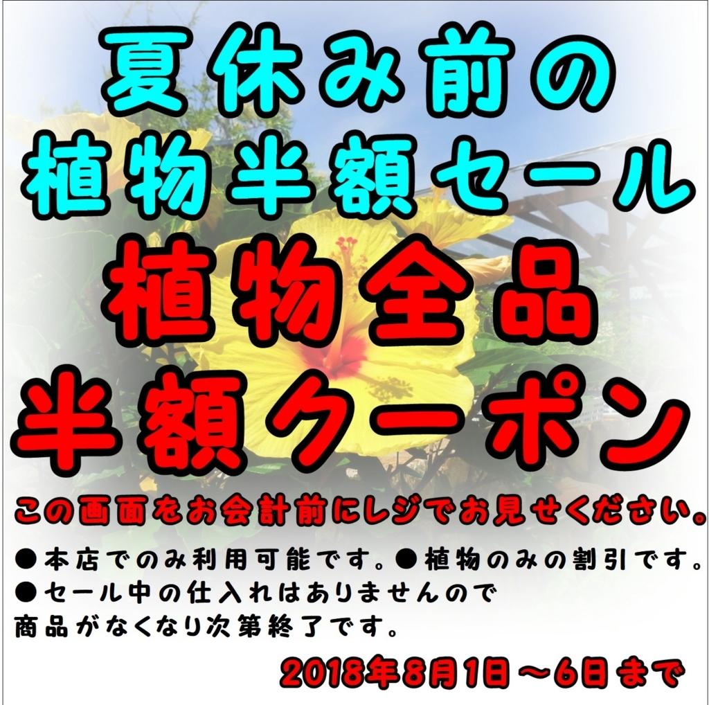 f:id:GP-Yamacho:20180727090240j:plain