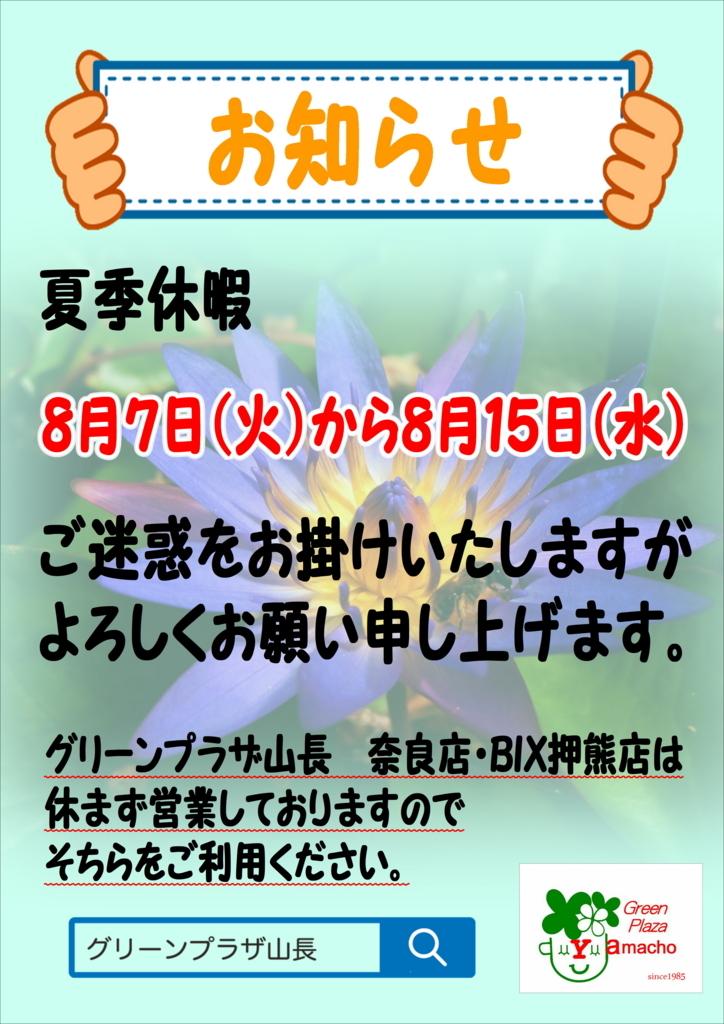 f:id:GP-Yamacho:20180727091335j:plain