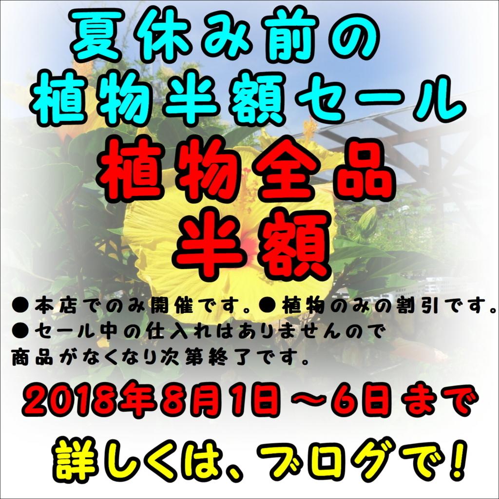 f:id:GP-Yamacho:20180802141537j:plain