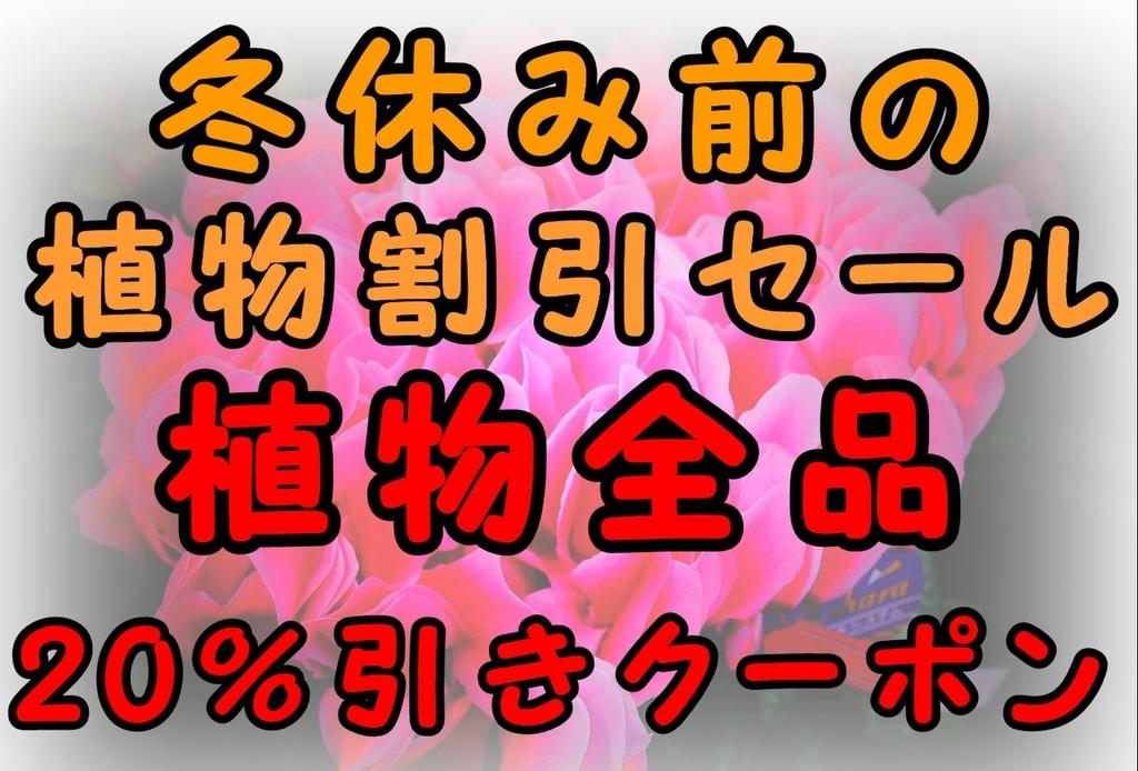 f:id:GP-Yamacho:20181222091512j:plain