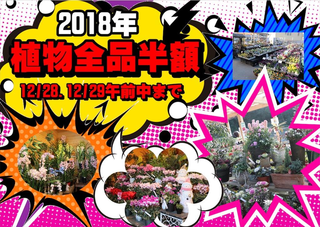 f:id:GP-Yamacho:20181227161919j:image