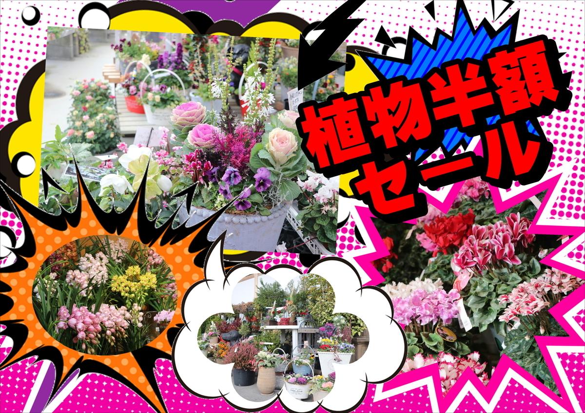 f:id:GP-Yamacho:20201224131420j:plain