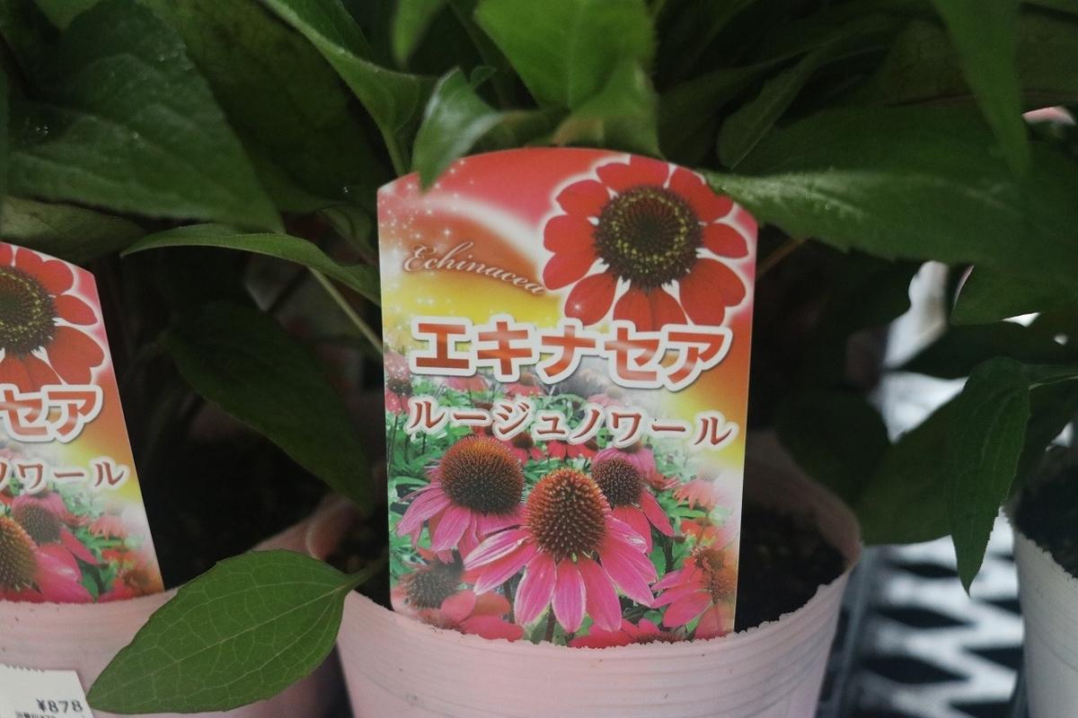 f:id:GP-Yamacho:20210616172525j:plain