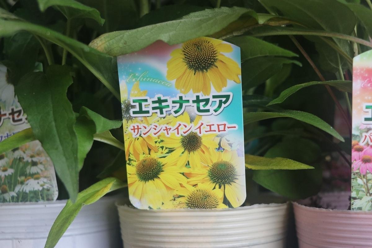 f:id:GP-Yamacho:20210616172659j:plain