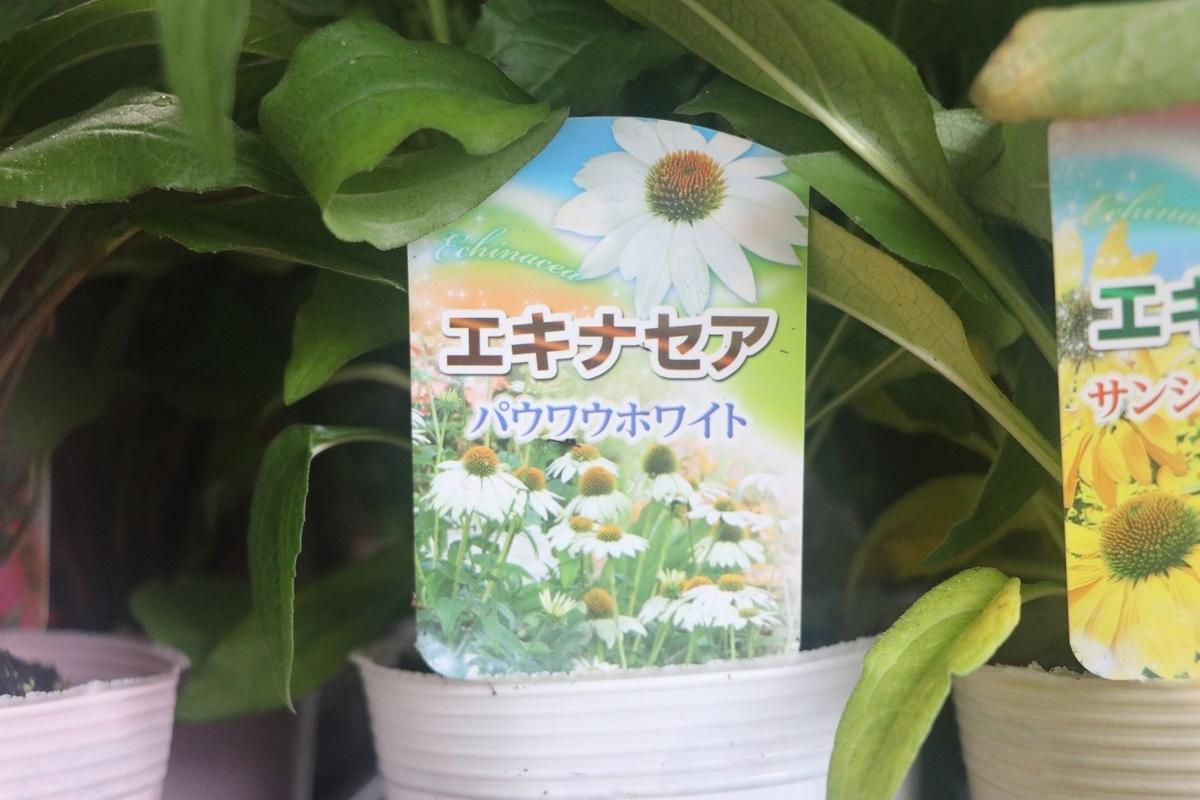 f:id:GP-Yamacho:20210616172715j:plain