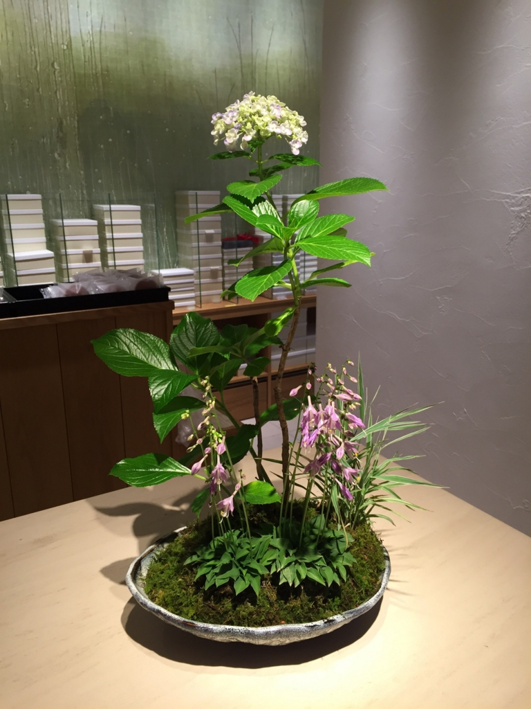 f:id:GardenPorter:20160704075845j:plain