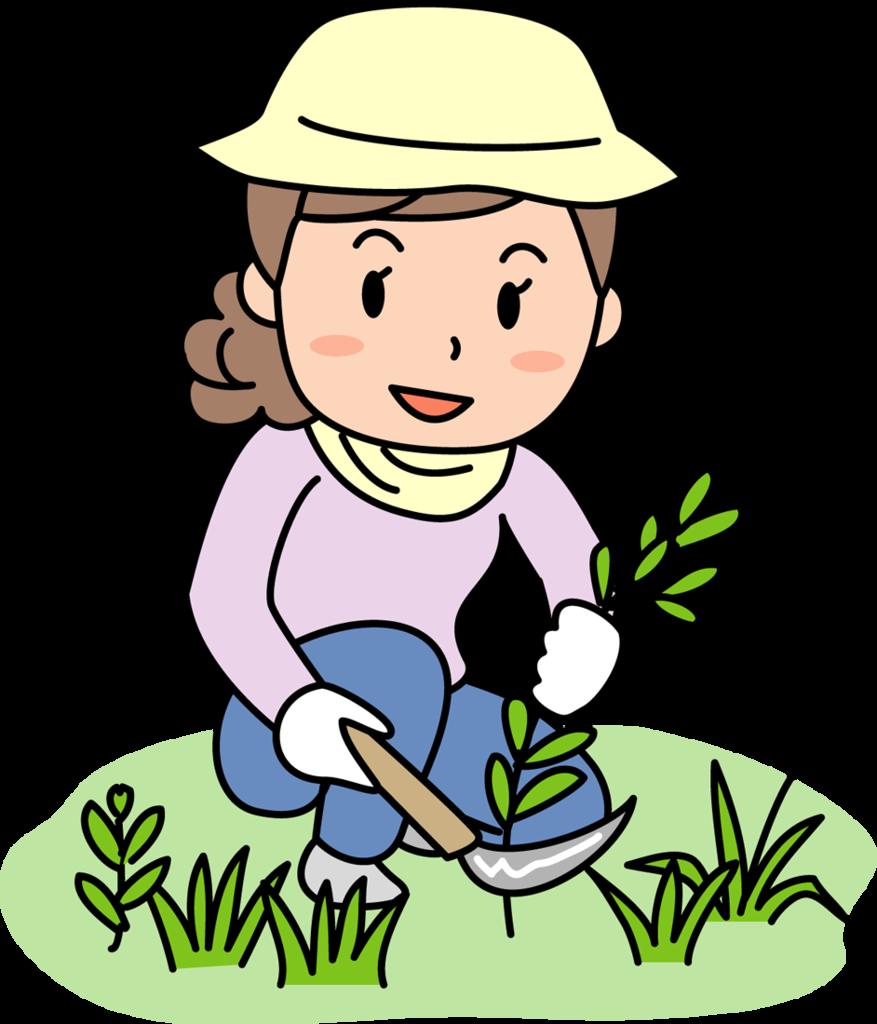 f:id:GardenPorter:20160725135006p:plain