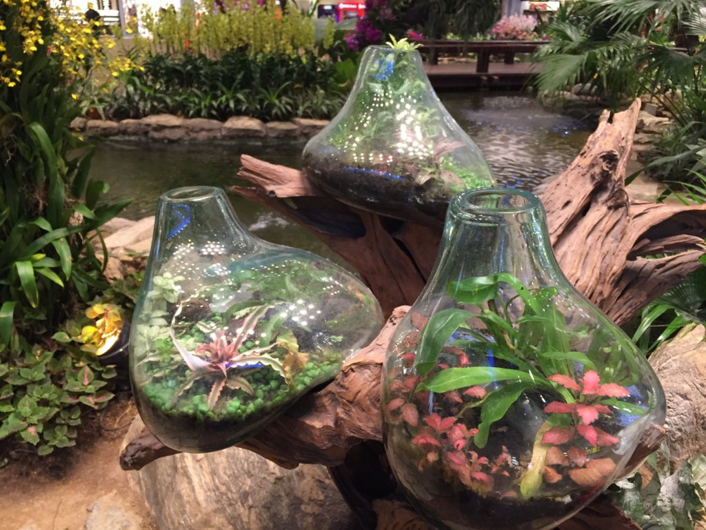 f:id:GardenPorter:20161003092225j:plain