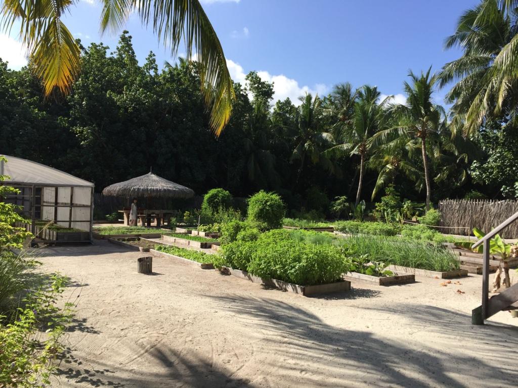 f:id:GardenPorter:20161005152200j:plain