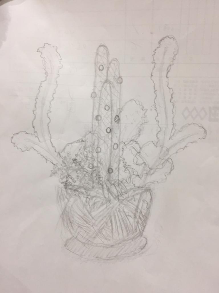 f:id:GardenPorter:20161223114918j:plain