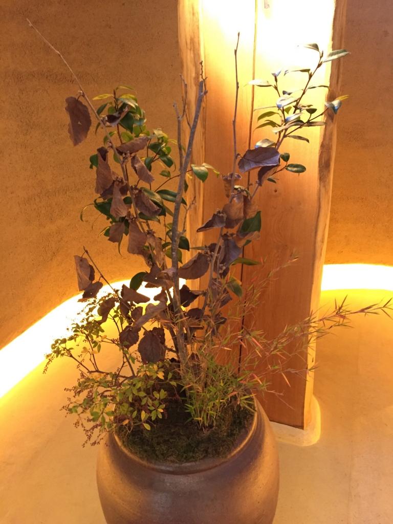 f:id:GardenPorter:20161223182305j:plain