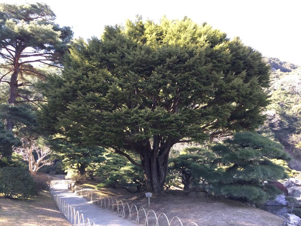f:id:GardenPorter:20170220092427j:plain