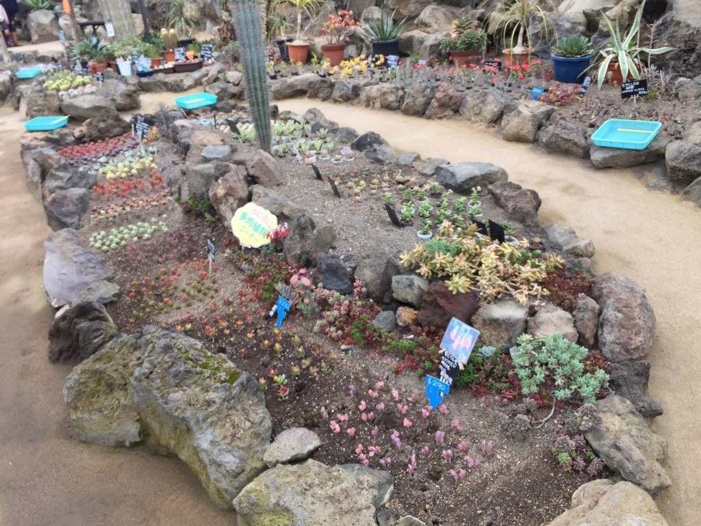 f:id:GardenPorter:20170306100215j:plain