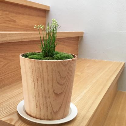 f:id:GardenPorter:20171005082933j:plain