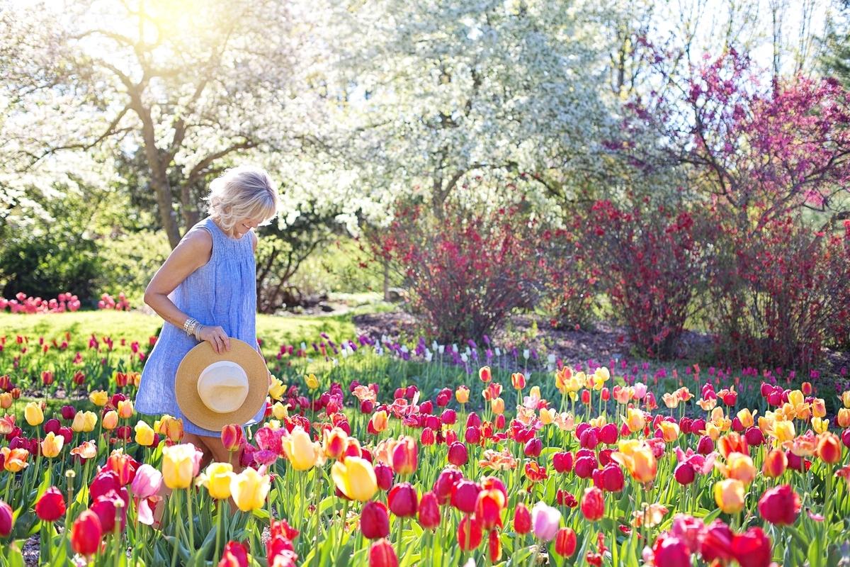 f:id:GardeningTips101:20191214152208j:plain