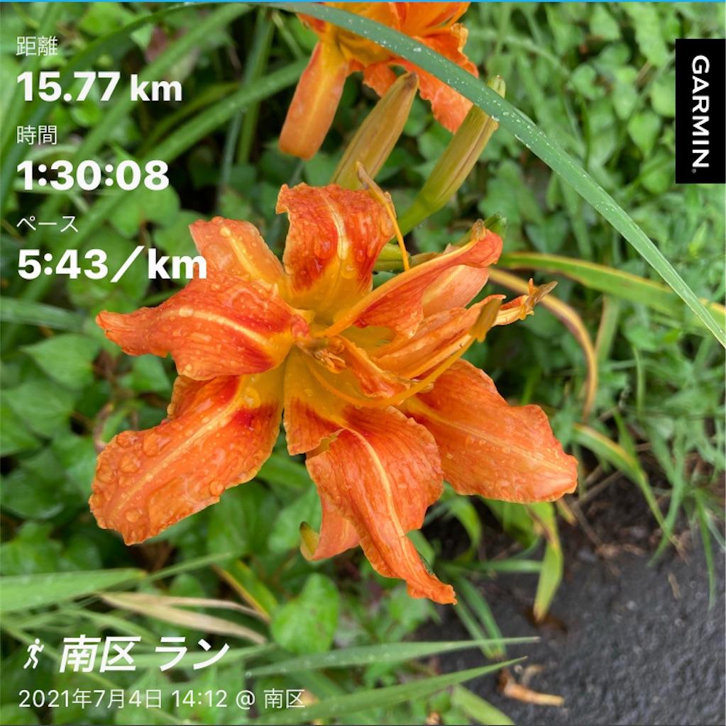 f:id:Genmai_17:20210704184707j:image