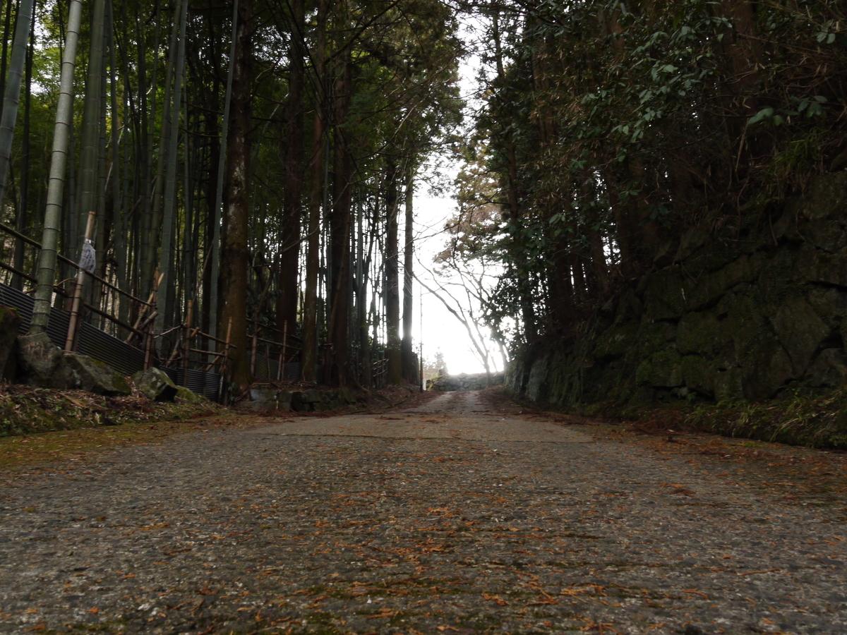 f:id:GiapponeDoriano:20210129190121j:plain