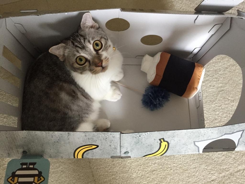 f:id:Gomez-cat:20170819003808j:plain