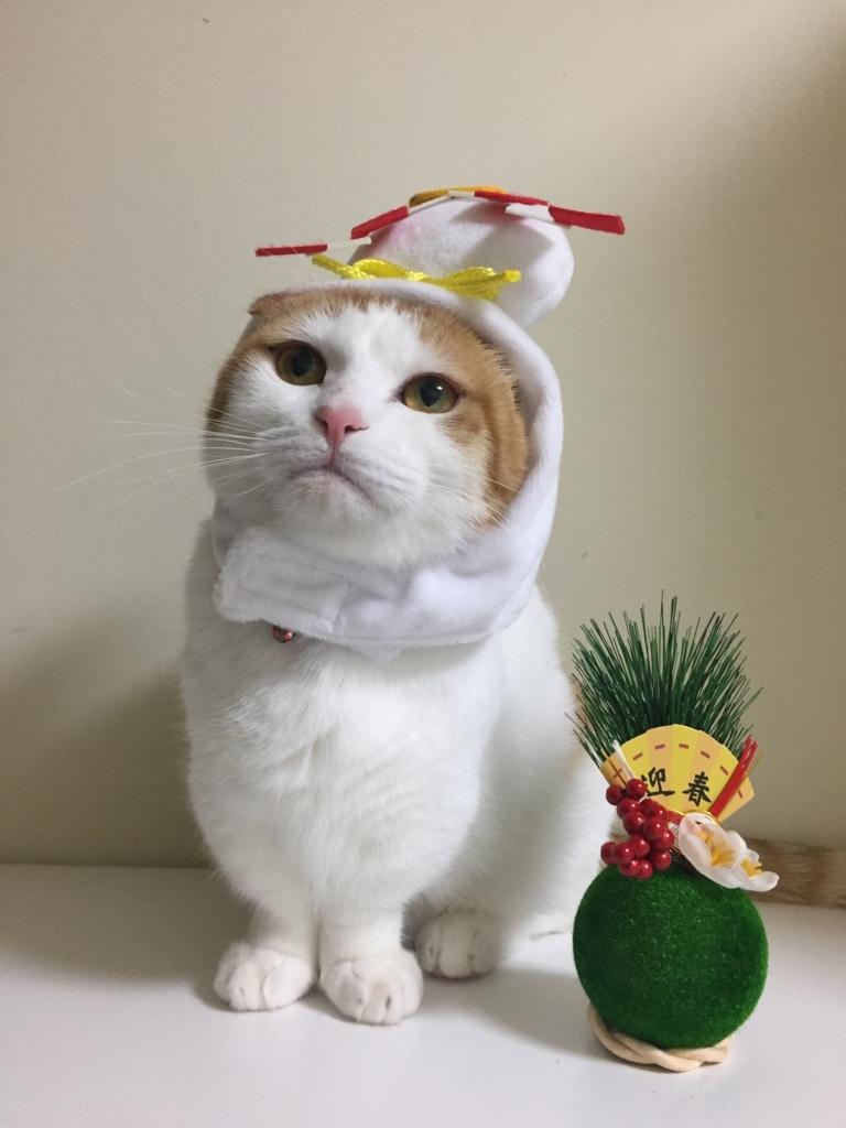 f:id:Gomez-cat:20180120193417j:plain