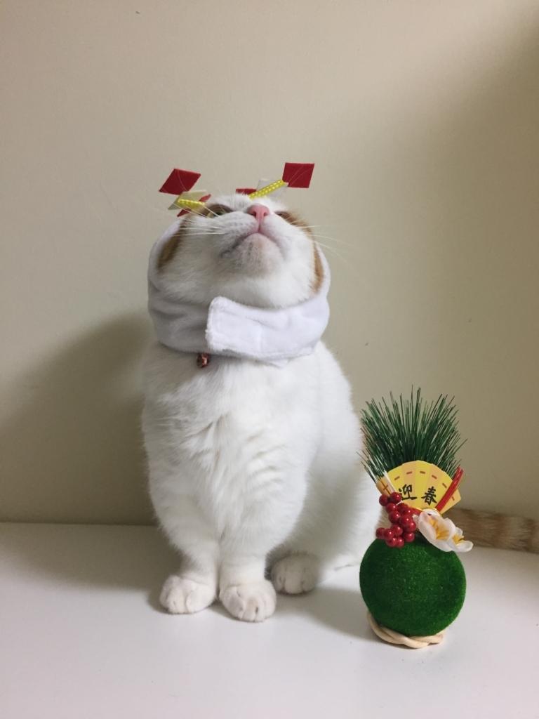 f:id:Gomez-cat:20180120193434j:plain