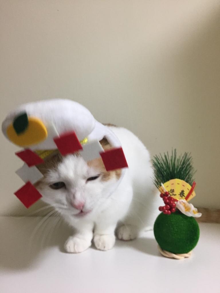 f:id:Gomez-cat:20180120193533j:plain