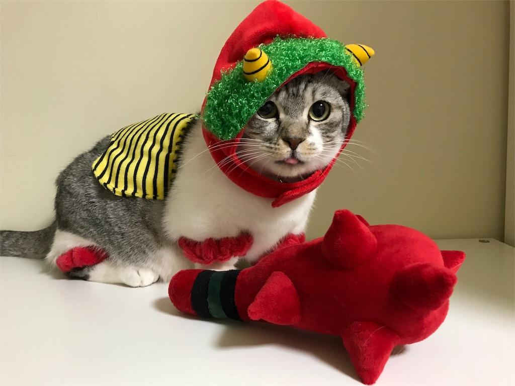 f:id:Gomez-cat:20180121000726j:image