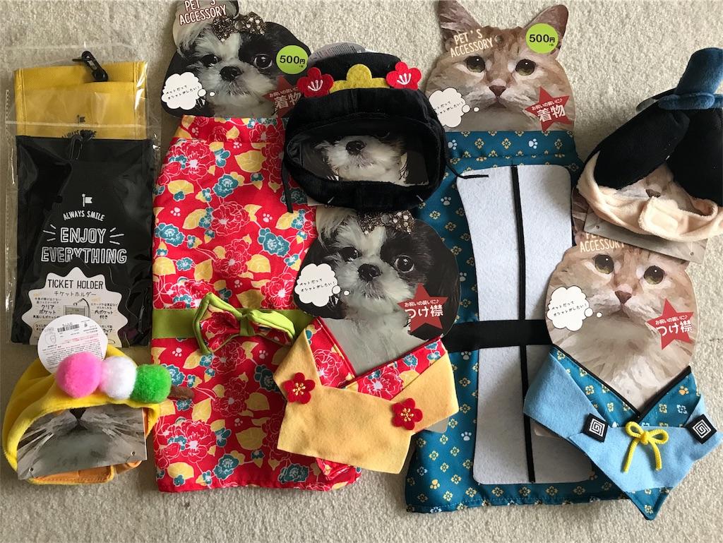 f:id:Gomez-cat:20180213205944j:image