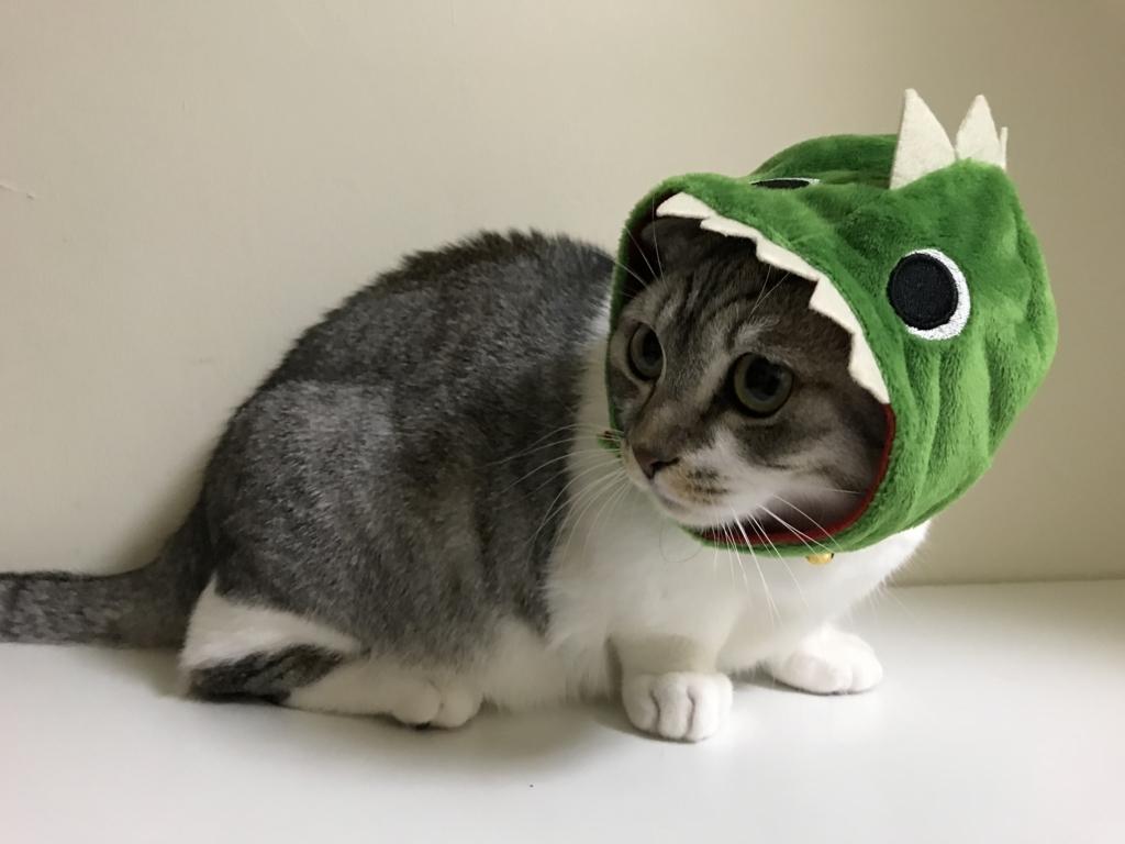 f:id:Gomez-cat:20180215192139j:plain