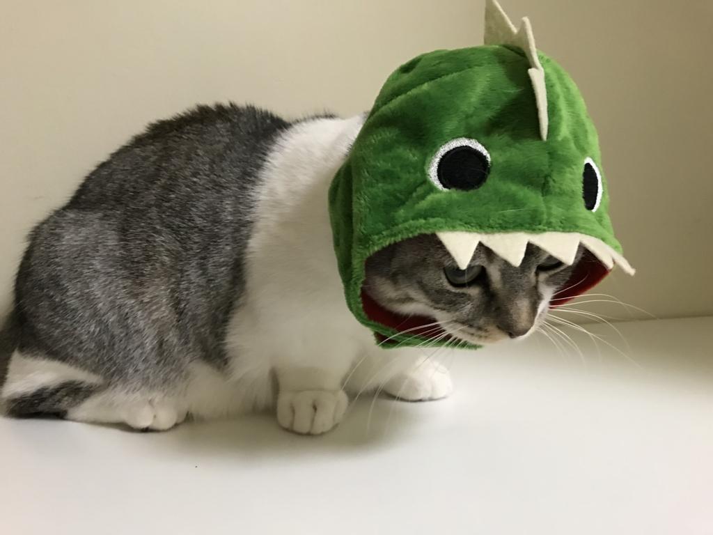 f:id:Gomez-cat:20180215192147j:plain