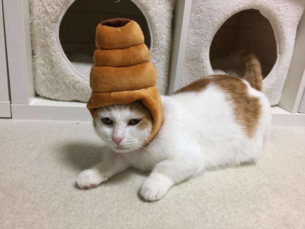 f:id:Gomez-cat:20180219225303j:plain