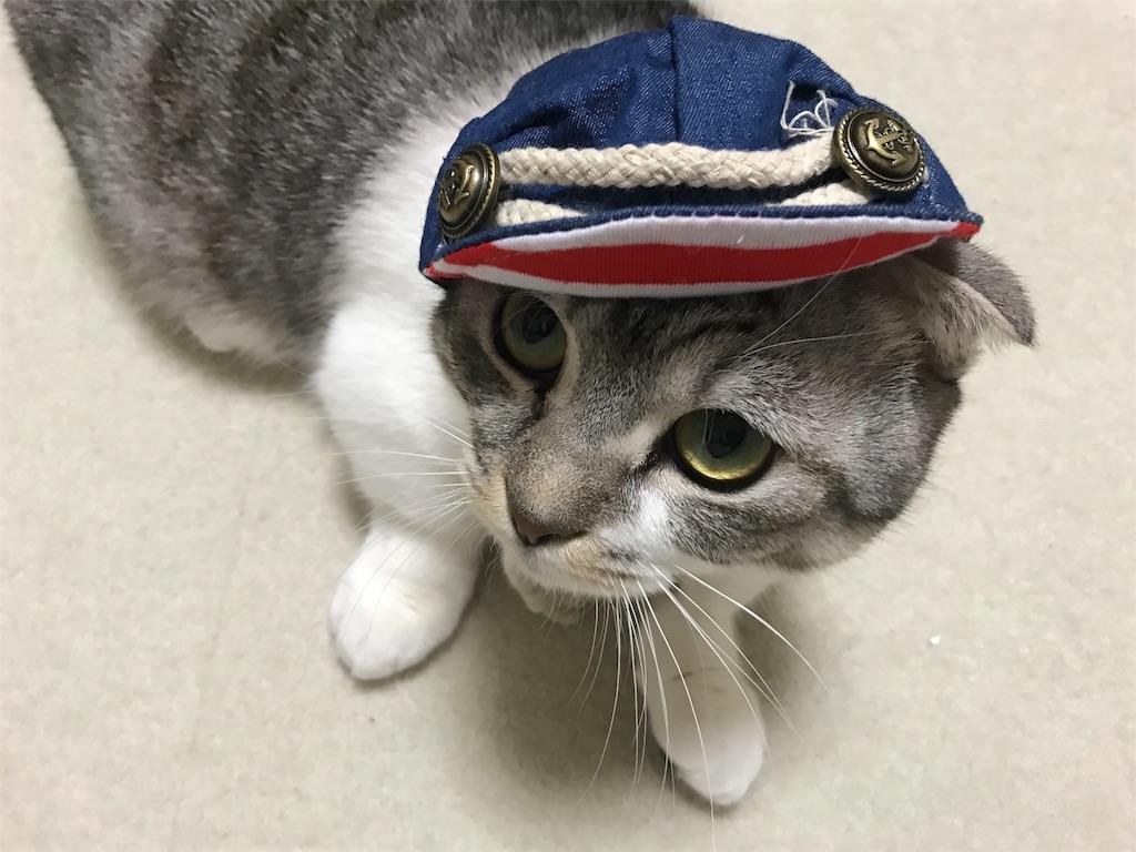 f:id:Gomez-cat:20180226175902j:image