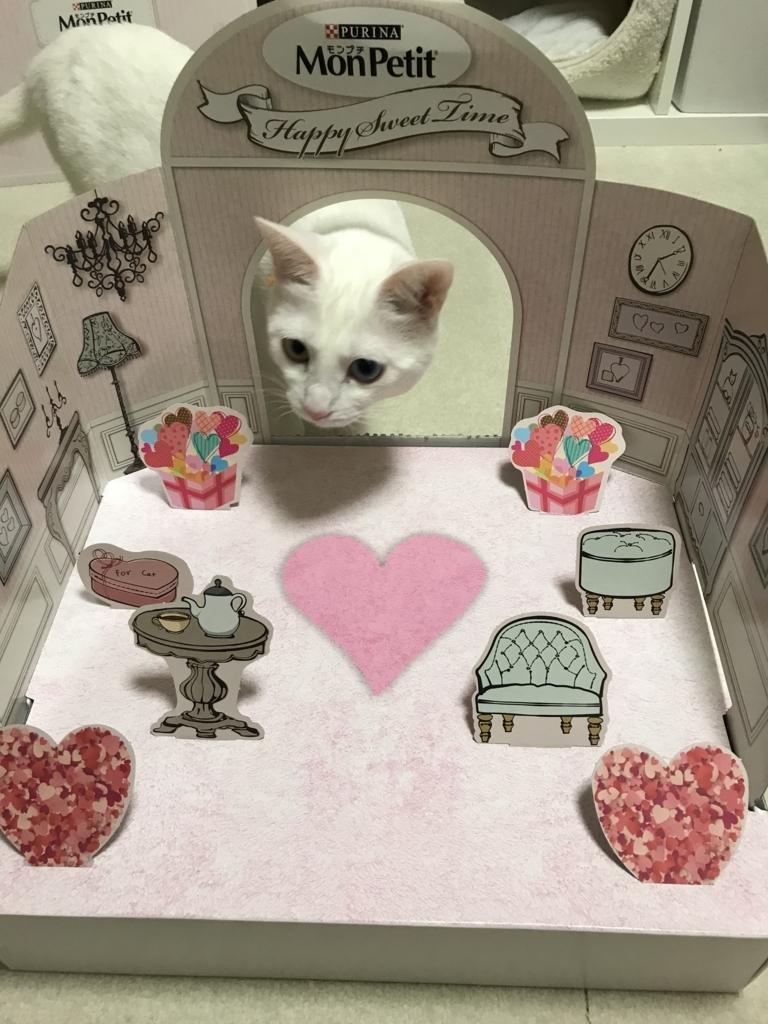 f:id:Gomez-cat:20180303001329j:plain
