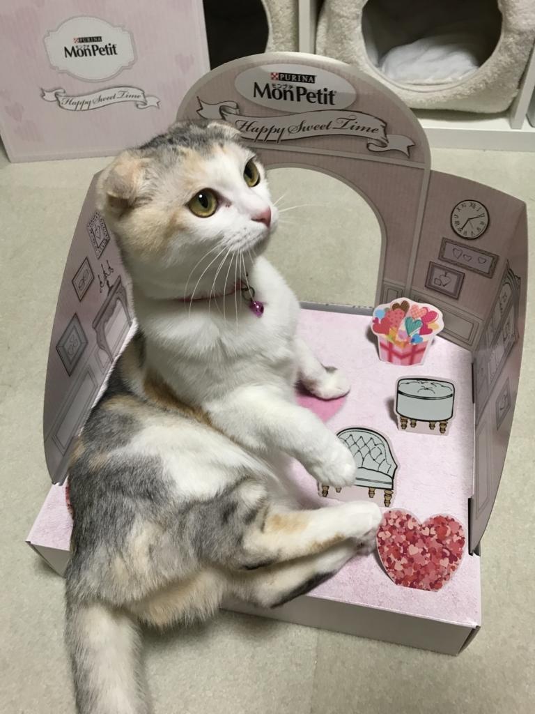 f:id:Gomez-cat:20180303001419j:plain