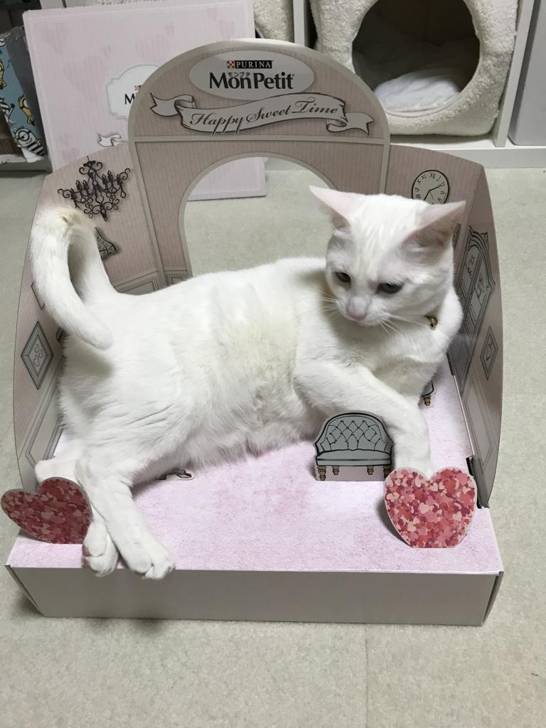 f:id:Gomez-cat:20180303001606j:plain
