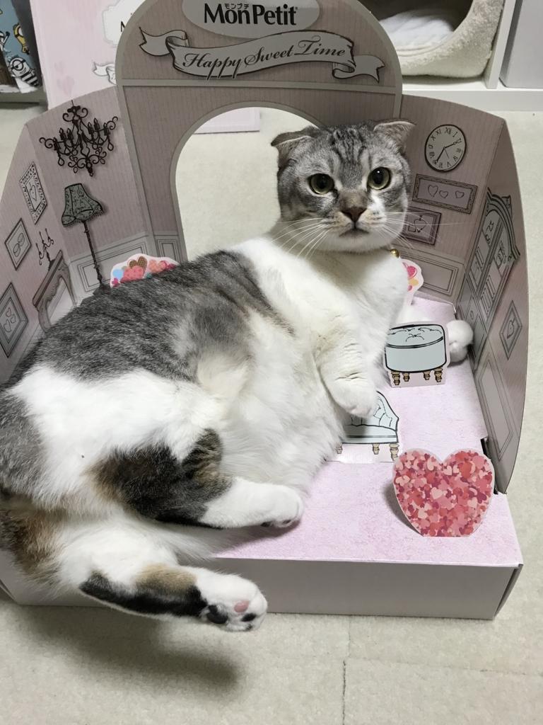 f:id:Gomez-cat:20180303003510j:plain