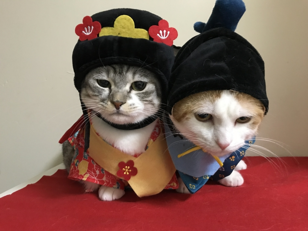 f:id:Gomez-cat:20180303012231j:plain