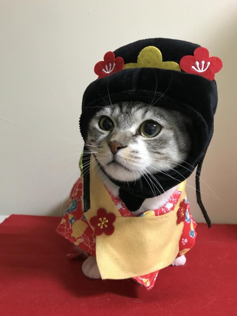 f:id:Gomez-cat:20180303013104j:plain