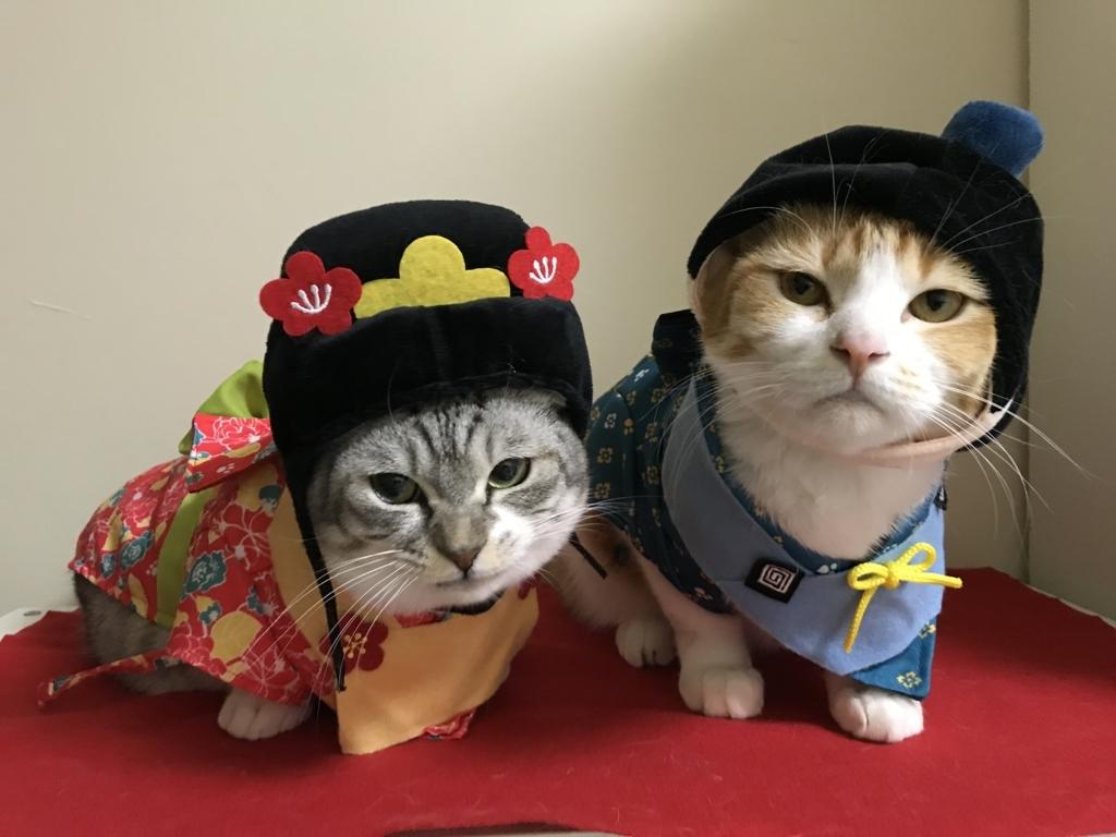 f:id:Gomez-cat:20180303013402j:plain