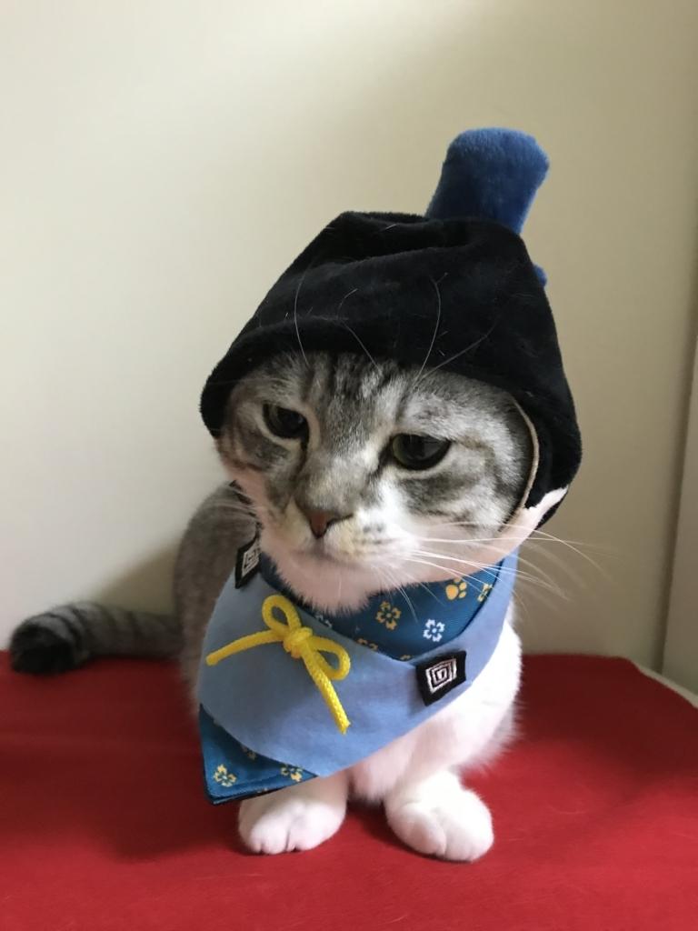 f:id:Gomez-cat:20180303013633j:plain