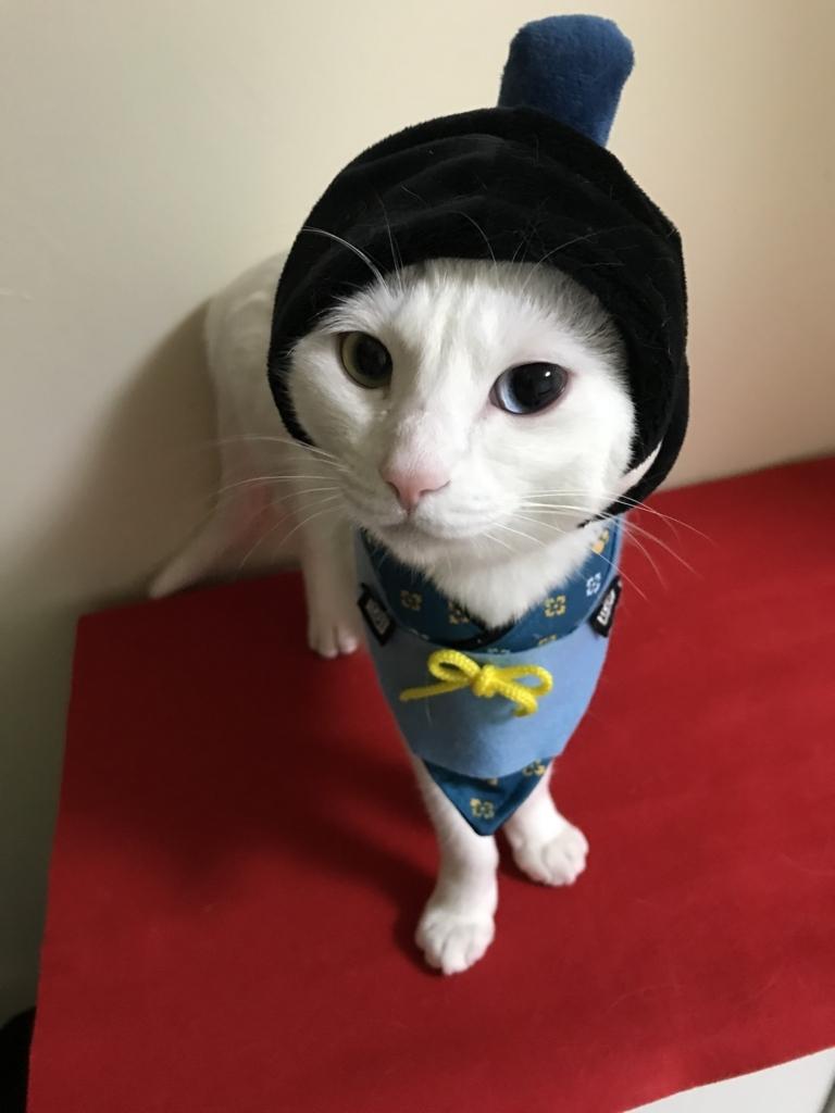 f:id:Gomez-cat:20180303013706j:plain