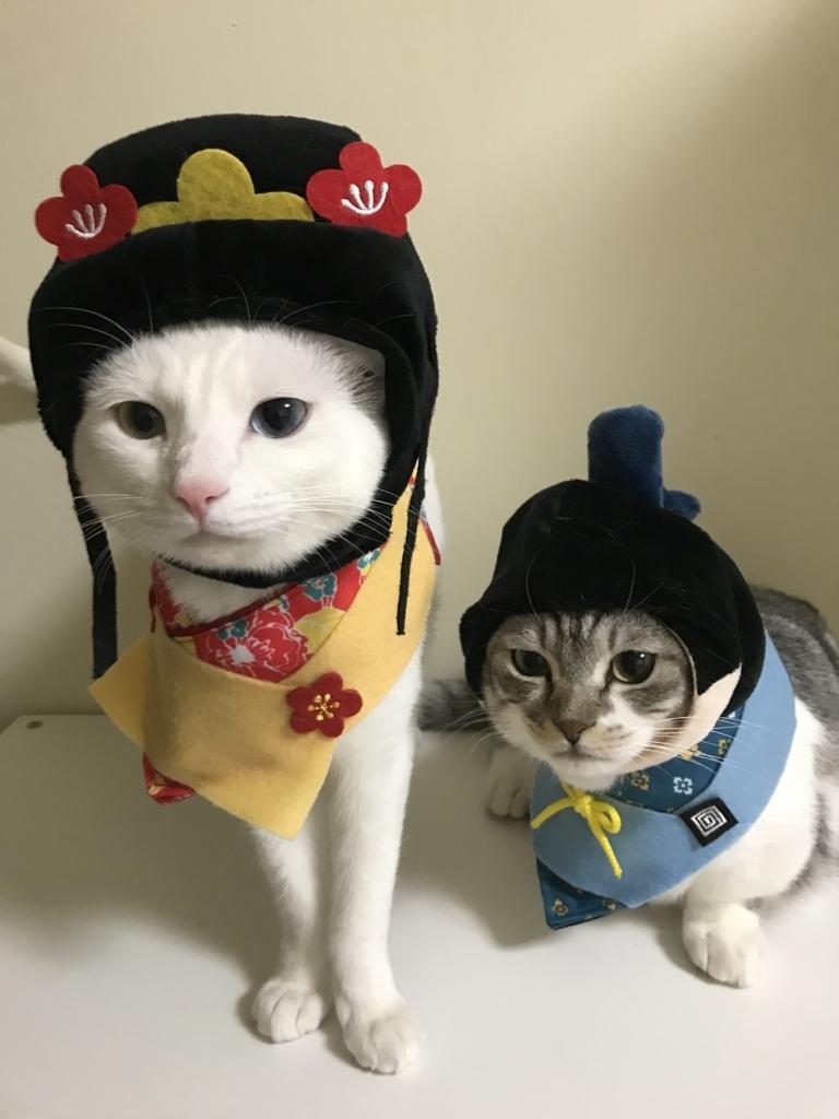 f:id:Gomez-cat:20180303220907j:plain