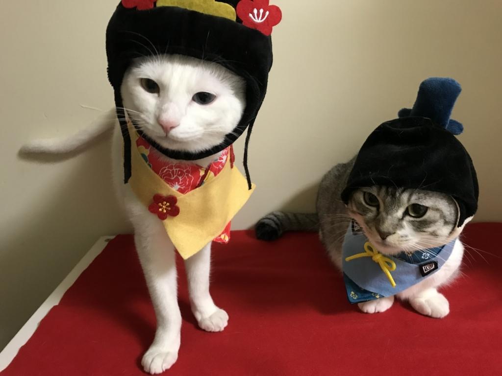 f:id:Gomez-cat:20180303220945j:plain