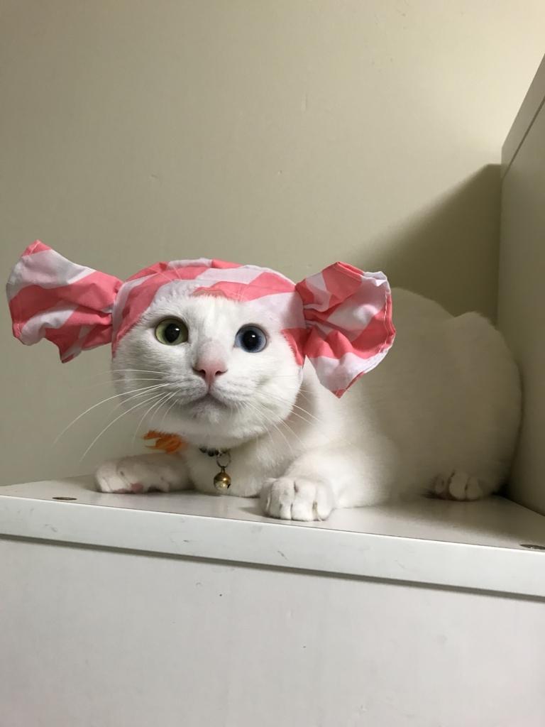 f:id:Gomez-cat:20180812001645j:plain