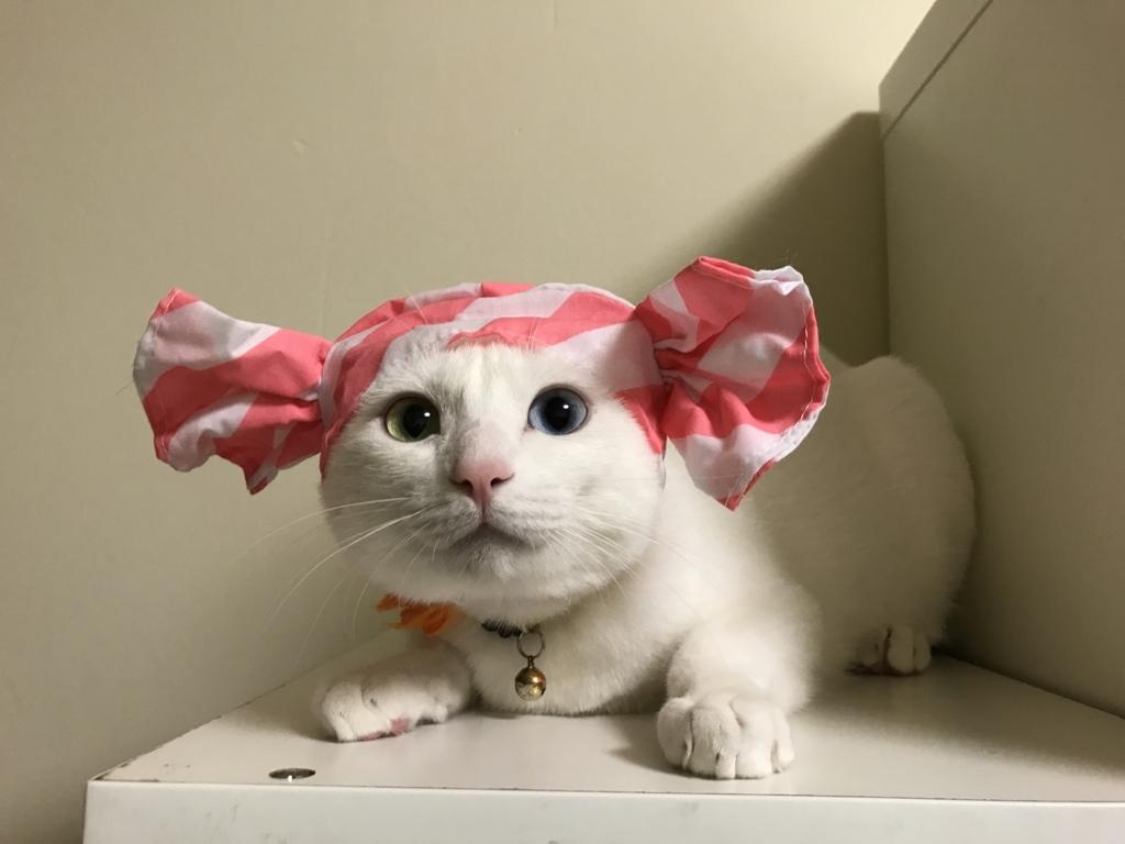 f:id:Gomez-cat:20180812001700j:plain