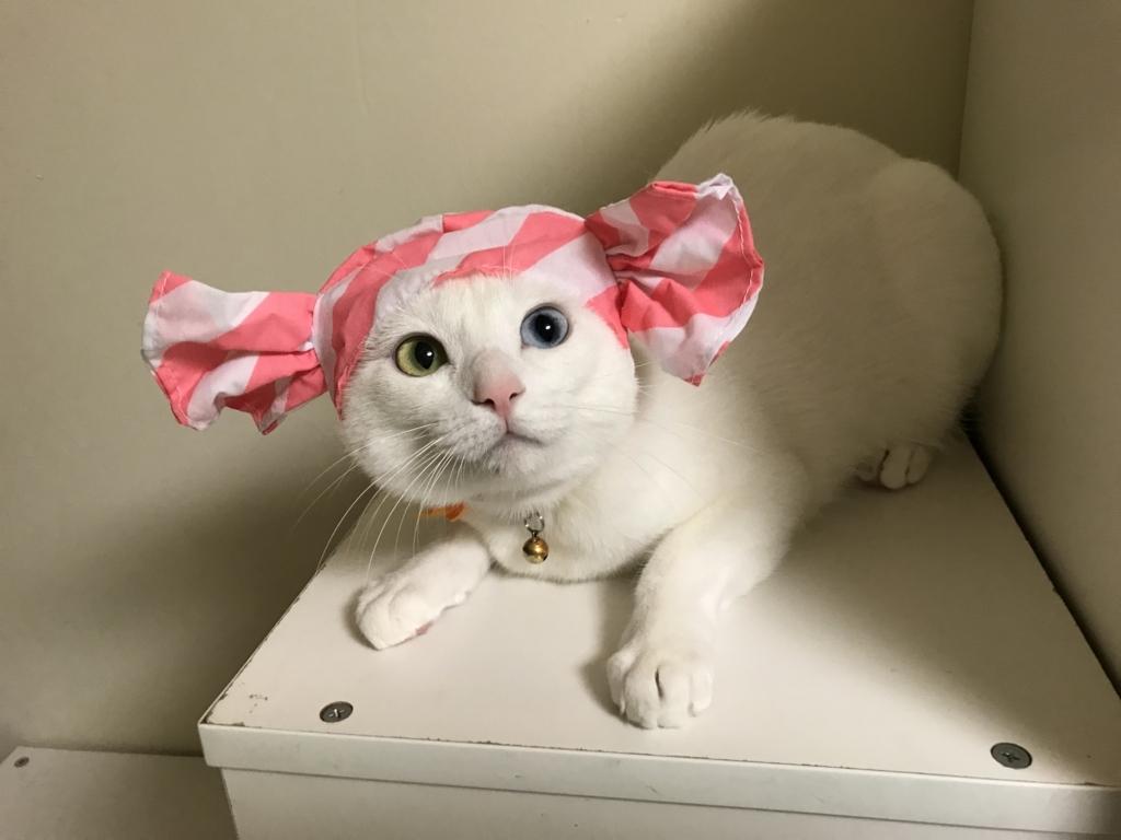 f:id:Gomez-cat:20180812001721j:plain