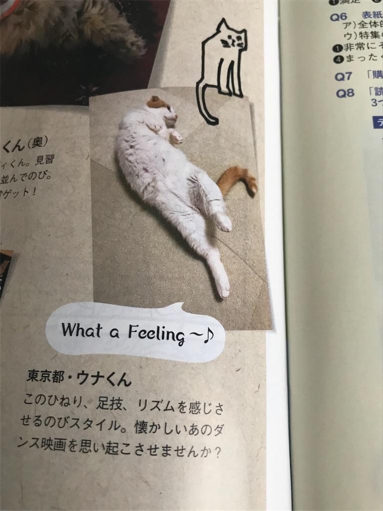 f:id:Gomez-cat:20181005133556j:image