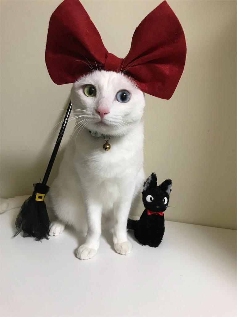 f:id:Gomez-cat:20181103232057j:image
