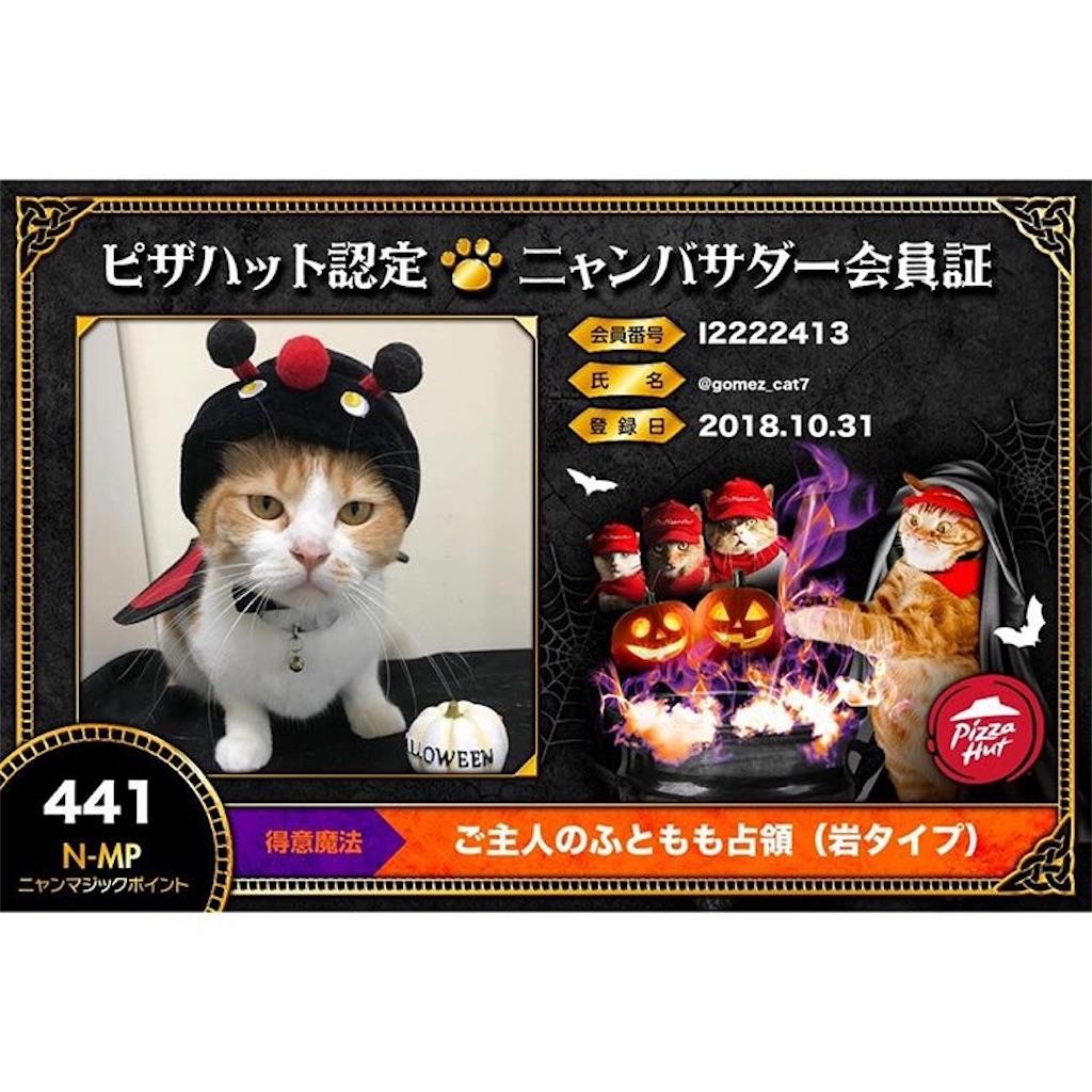 f:id:Gomez-cat:20181106005840j:plain