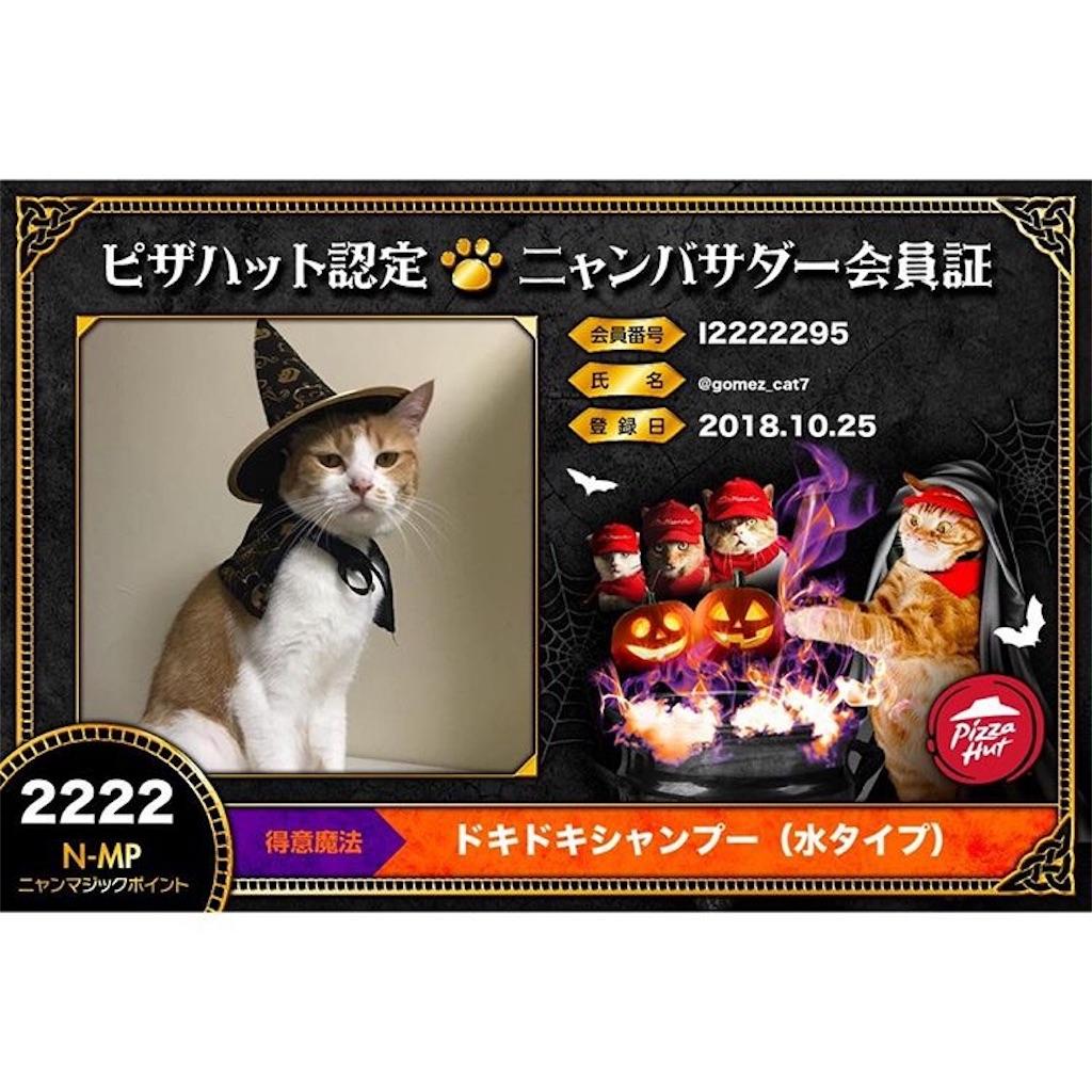 f:id:Gomez-cat:20181106005904j:plain