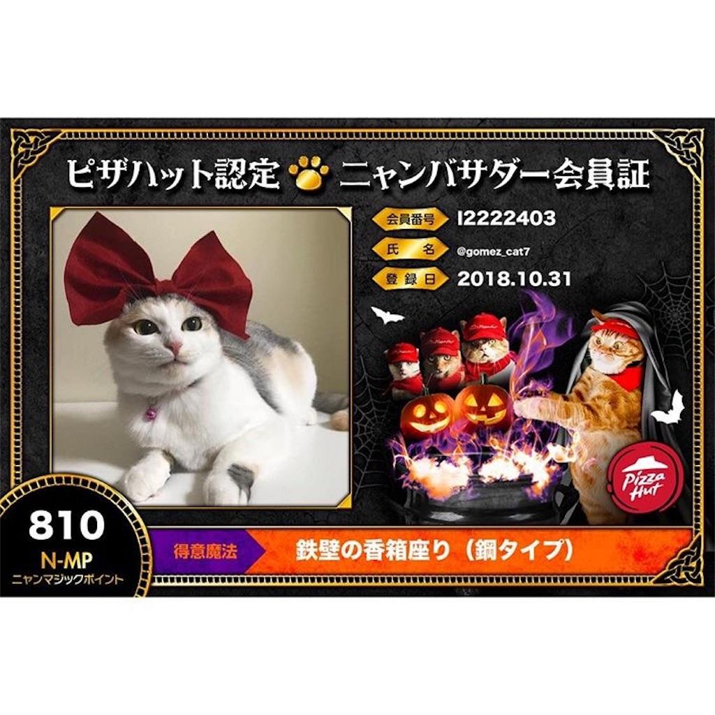 f:id:Gomez-cat:20181106005916j:plain